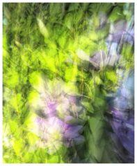 Abstrakte Impressionen (1)