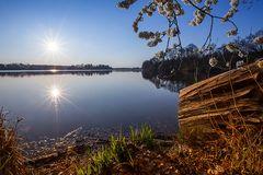 Abtsdorfer See im Frühling