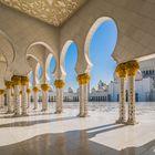 Abu Dhabi - Sheikh-Zajed-Moschee