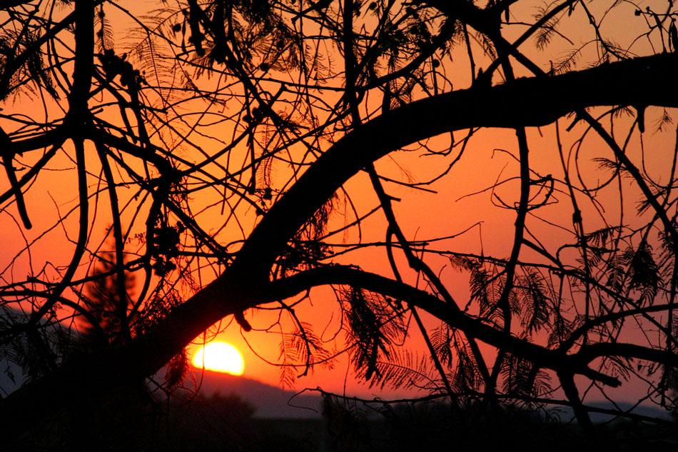 Acariciando el alba