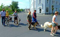 Achtung ! ABC-Schützen ohne Käppi***Hundeschule in der Stadt***