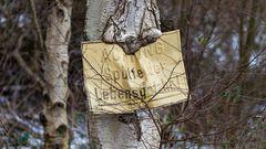 Achtung: Schilder fressender Baum!
