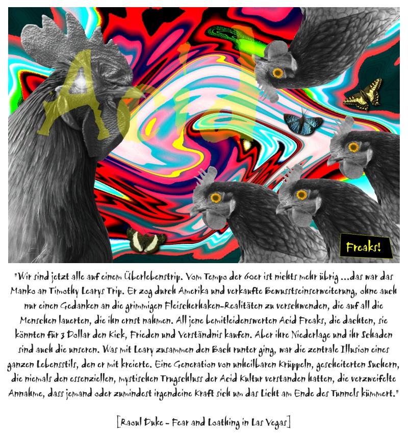 Acid Kultur / Fleischerhaken Realitäten