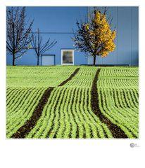 Ackerbau und Industrie