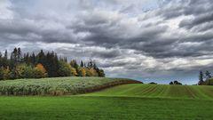 Ackerlandschafft bei Eutingen