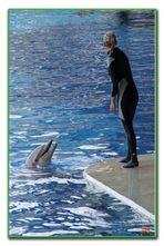 Addestratrice di delfini