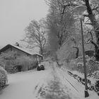 Adelsheim