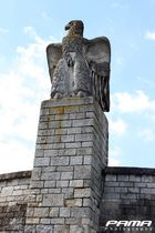 Adler in Straubing