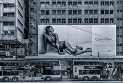 advertising jungle
