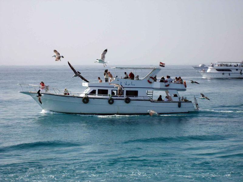 Ägypten-Rotes Meer
