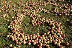 Äpfel...