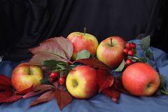 Äpfel 2