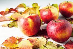 Äpfel .