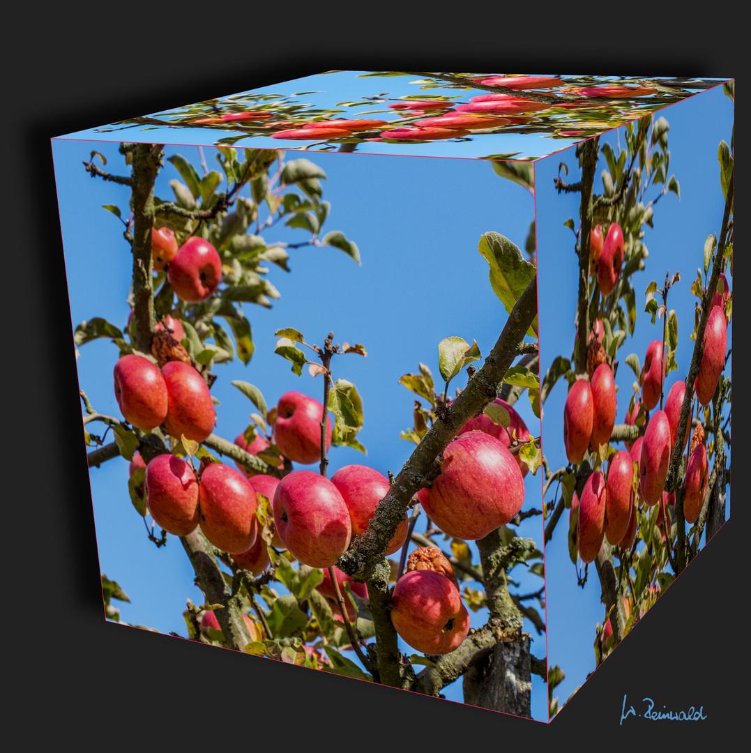 Äpfel ....