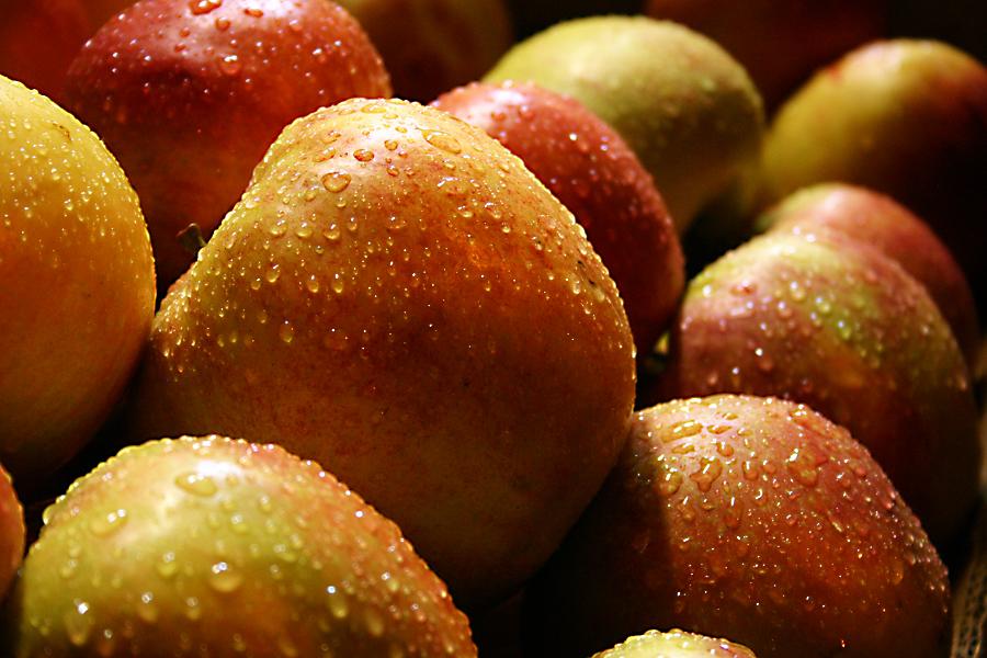Äpfel im Regen
