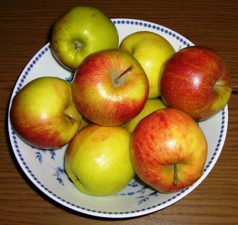 Äpfel im Urlaub