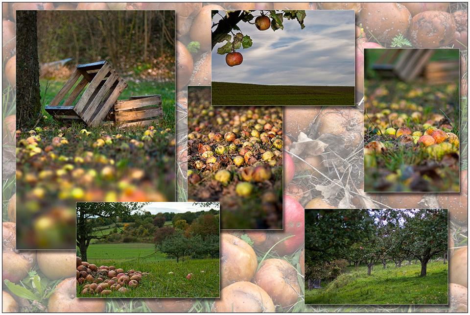 Äpfel-Tableau