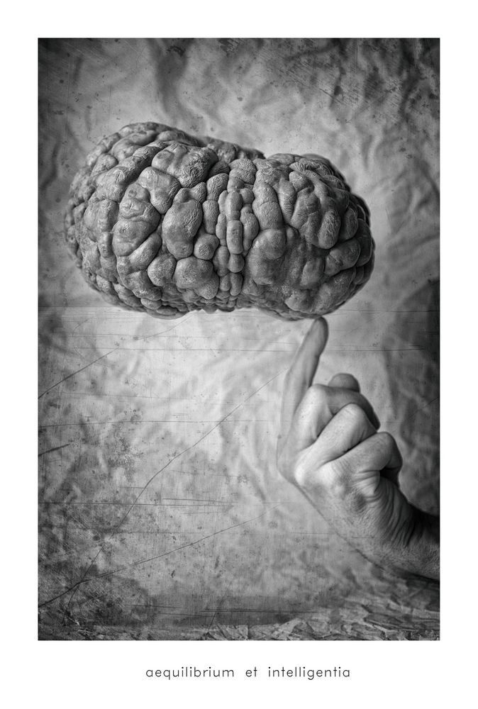 aequilibrium et intelligentia...