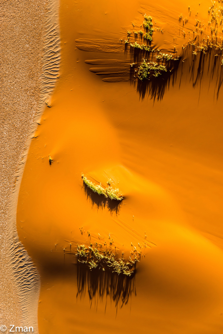 Aerial View of The Dune and Desert 06