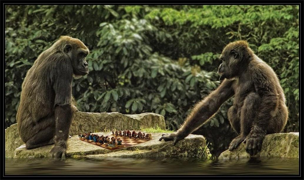 ...affengeiles Schachspiel...