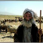 Afghanischer Hirte......