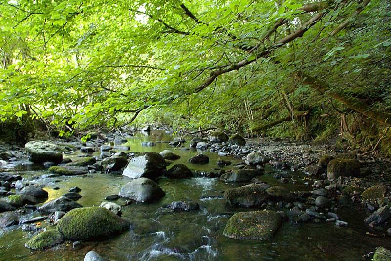 Afon Dogclwyd