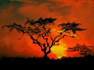 africa de color
