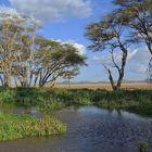 Afrikanische Landschaft in Kenia