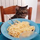 Aggiungi un posto a tavola...