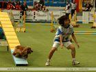 Agility WM 2005 - die Japaner im Kommen!