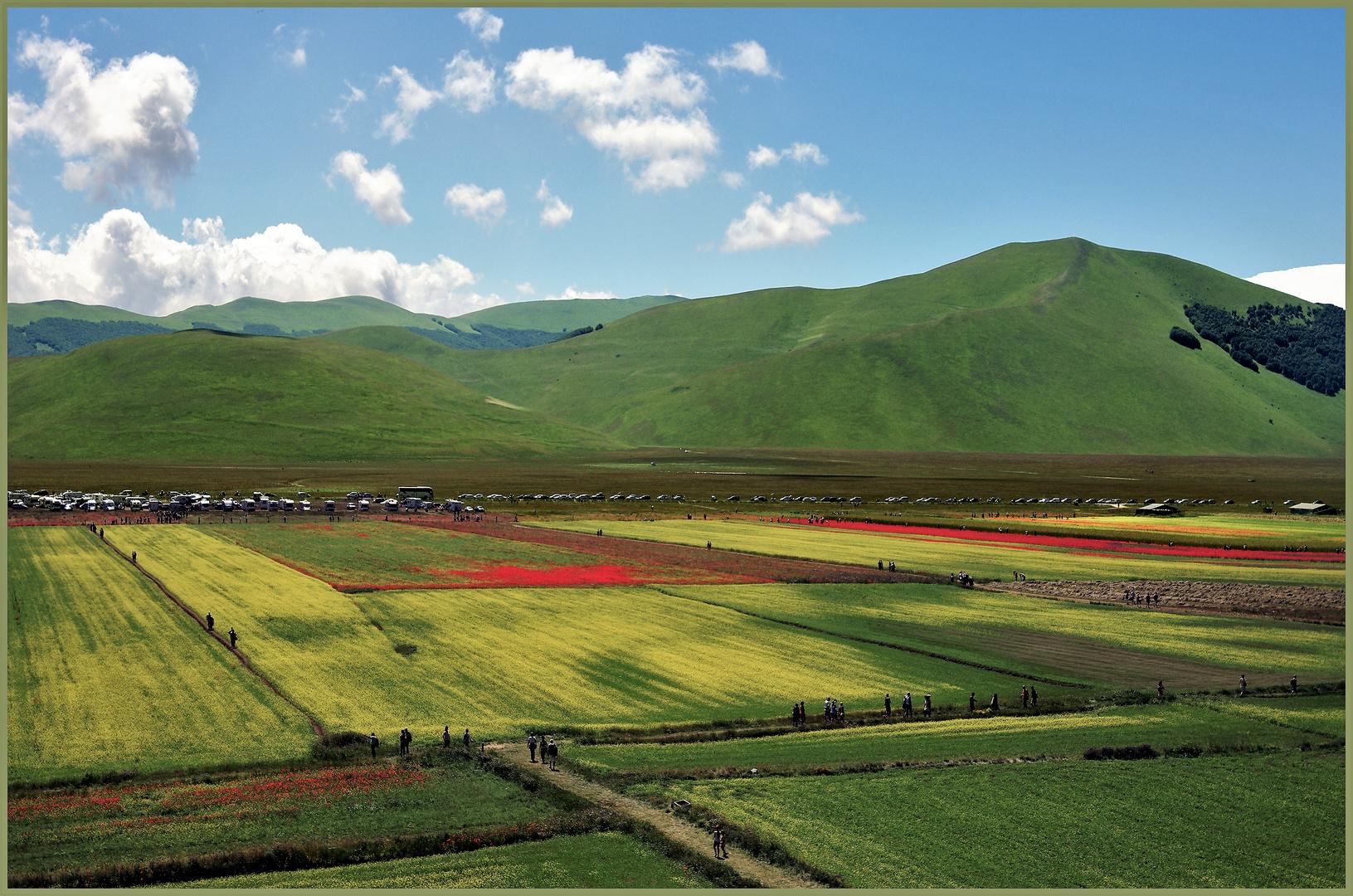 agriculture et tourisme  sur le plateau de castelluccio (1350m)