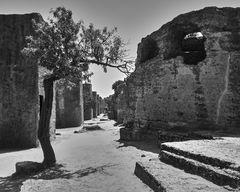 Agrigento, Sicilia - Italia VII
