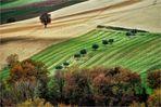AgriPatchwork