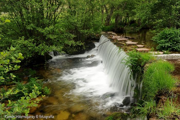 Agua, elemento imprescindible
