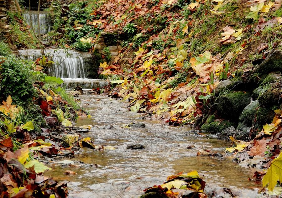 Aguas del río Darro