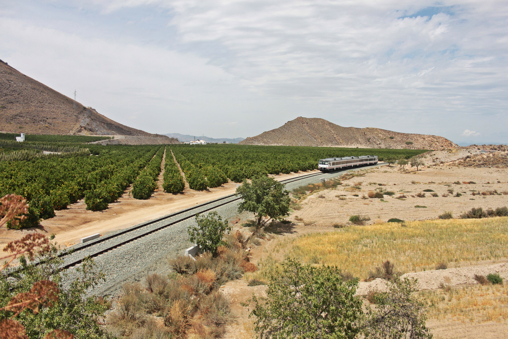 Aguilas - Lorca - Murcia...24