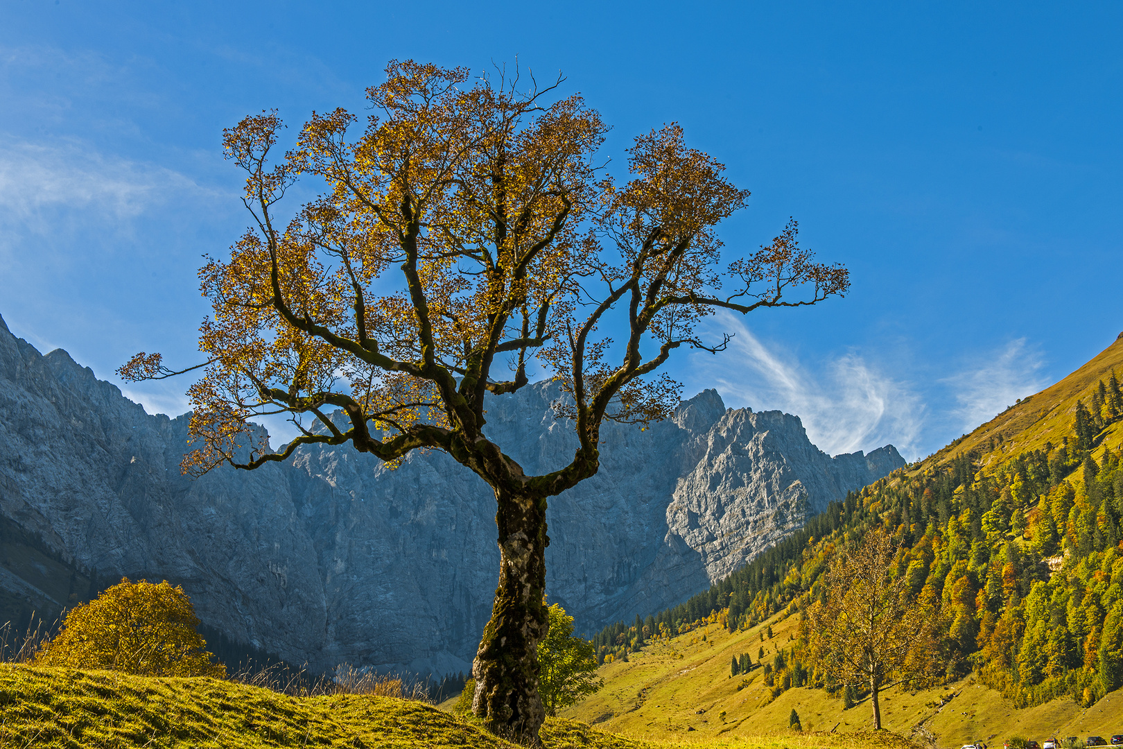 Ahornboden - Naturpark Karwendel