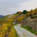 Ahr  Rotweinwanderweg: Fotogemälde.....
