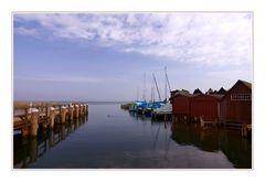 Ahrenshoop, Hafen mit Ente