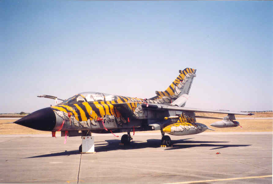 Aircraft Show in Portugal - Tornado Tiger