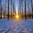 Al calar del sole