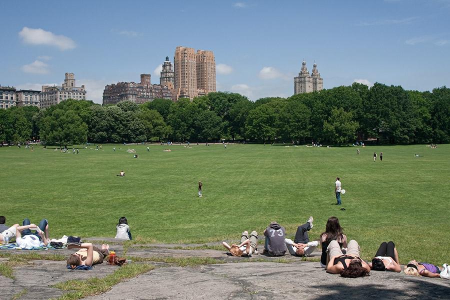 al sol en el parque