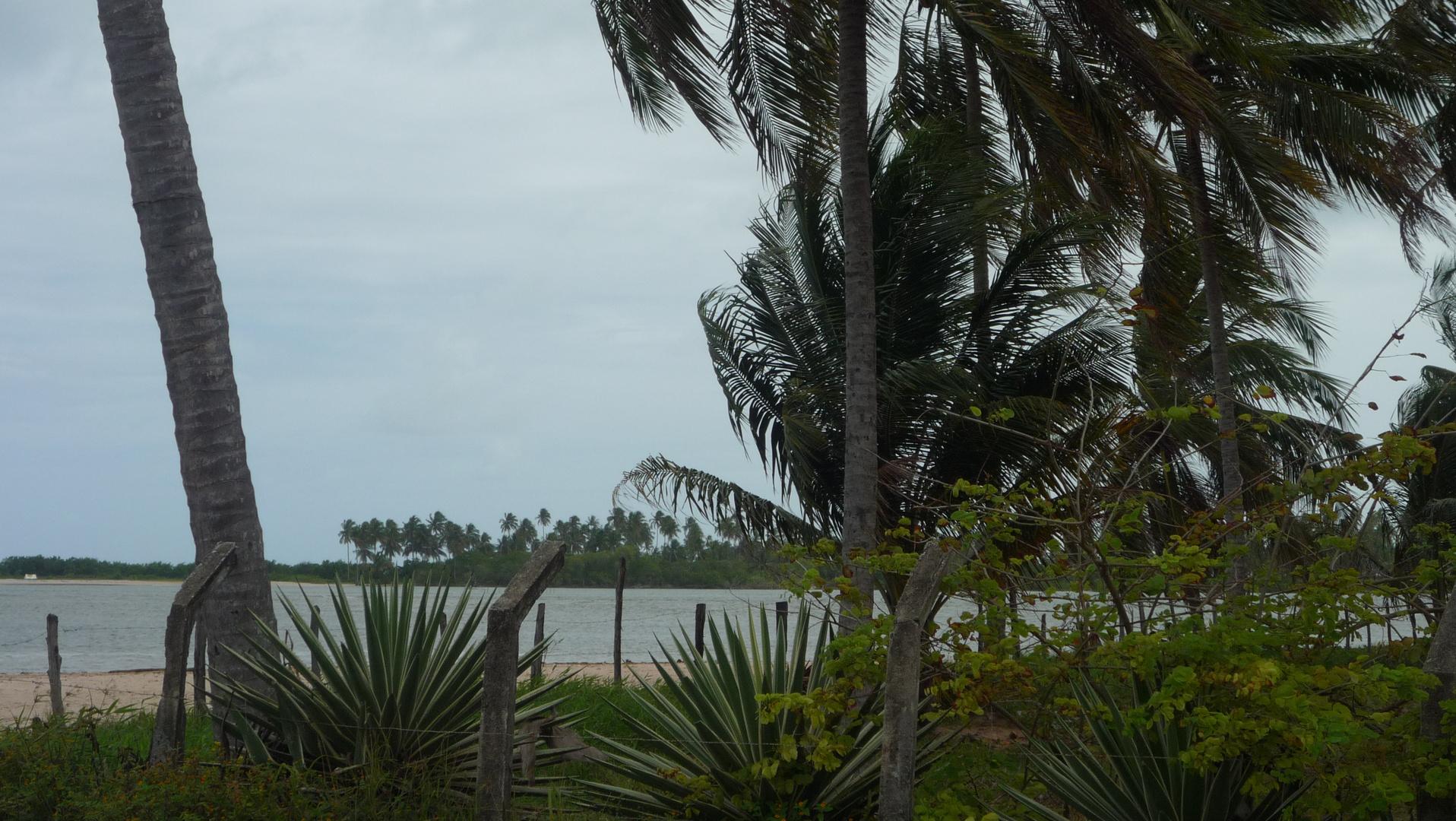 ALAGOAS - Praia do Camaragibe 2
