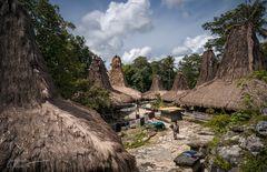 Alang & Jagung ~ Sumba Barat, Indonesia