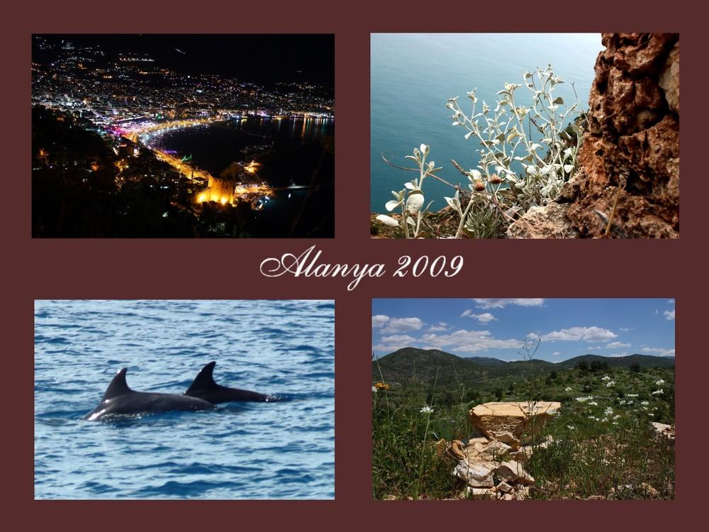 Alanya - Collection