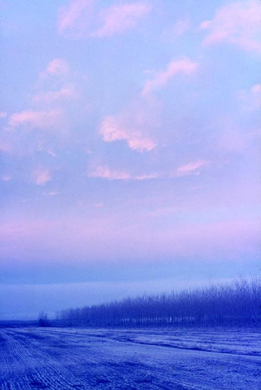 Alba a Paradiso (di Torsa)