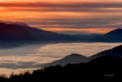 Alba dal Monte Pellecchia