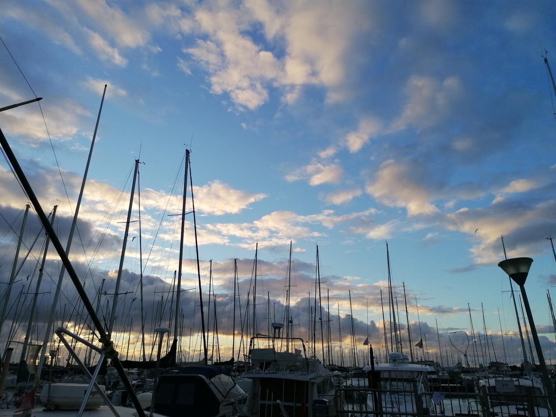 Alberi di barche al tramonto