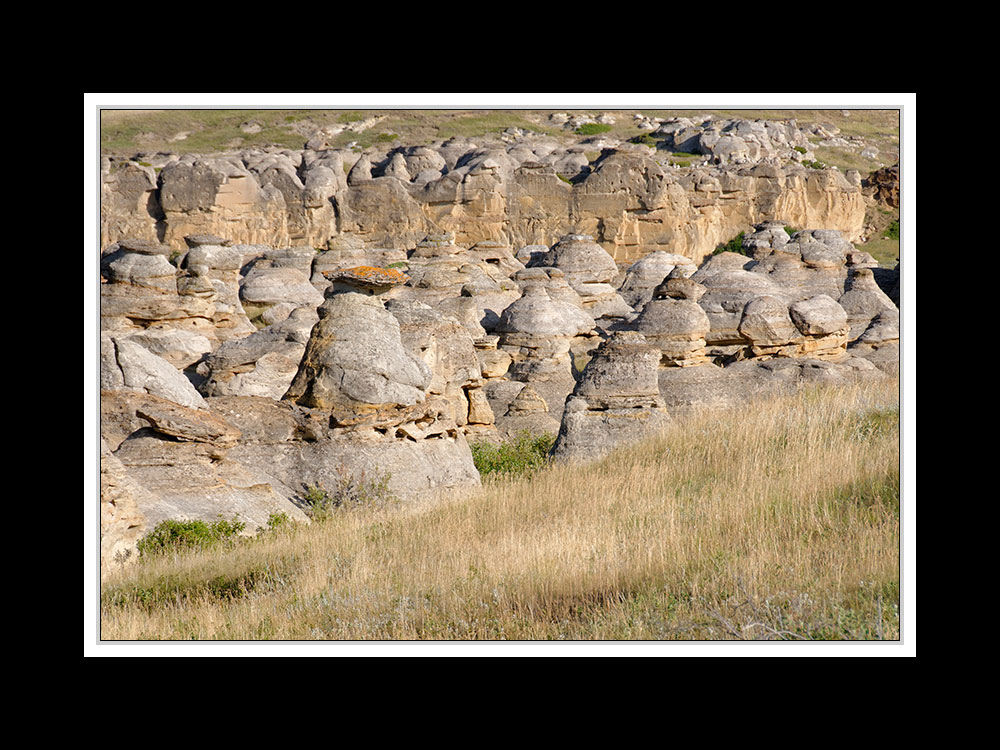 Alberta 052-Writing-on Stone