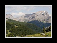 Alberta 178 Canmore